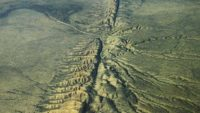 Plate Tectonics—The Reality Behind a Theory