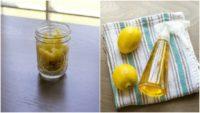 Easy Homemade Two-Ingredient Lemon Disinfectant Cleaner