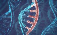 'RNA World' Paper Retracted